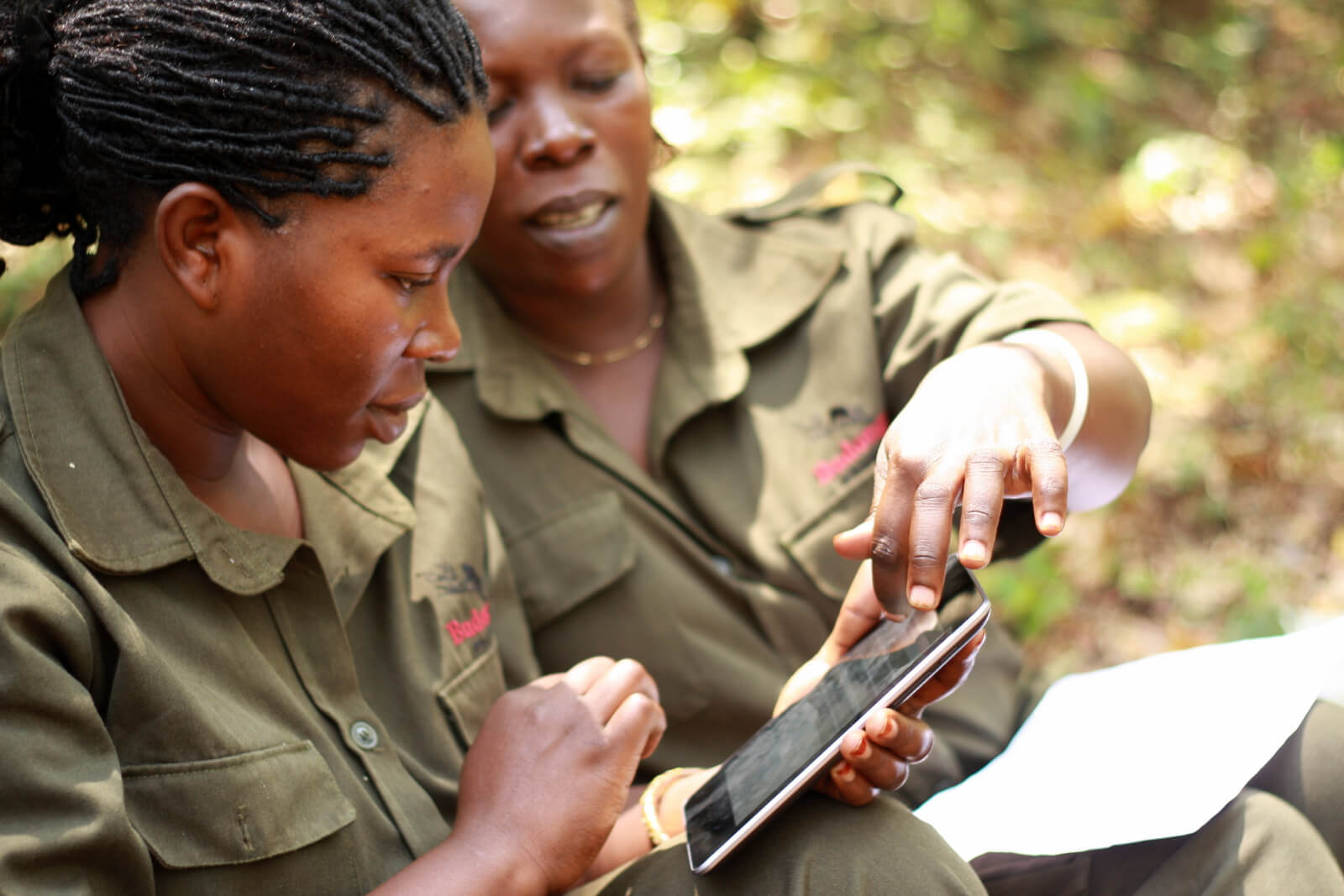 Jane Goodall Institute: Mobile Innovation for Tracking Deforestation